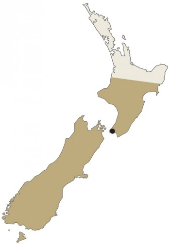 Wellington and Christchurch registries